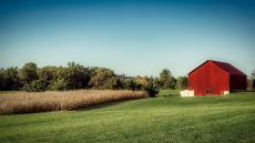 An image of a farm, including fields and a large shed