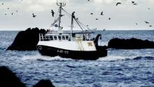 A fishing vessel with seagulls circling