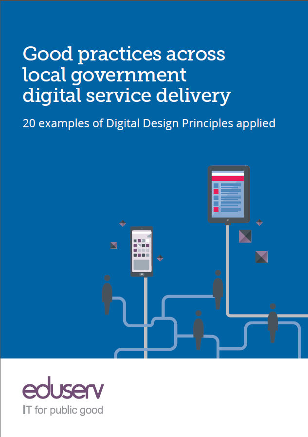 A picture of the Good practices across local government digital service delivery