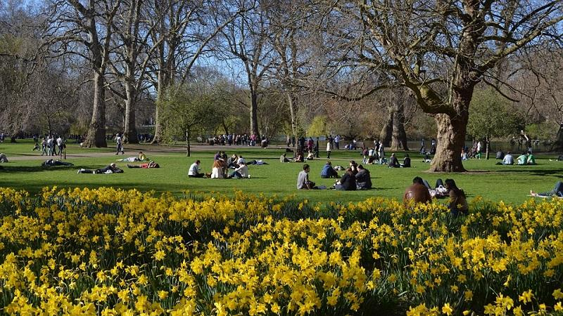 A picture of St James's Park in London