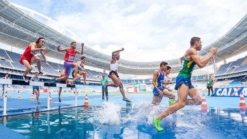 Image of a steeplechase race