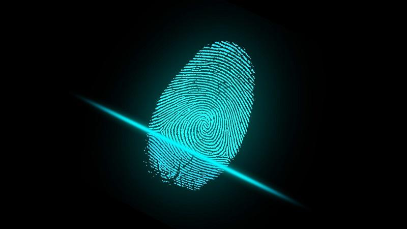 An image of a green fingerprint appearing on a black background