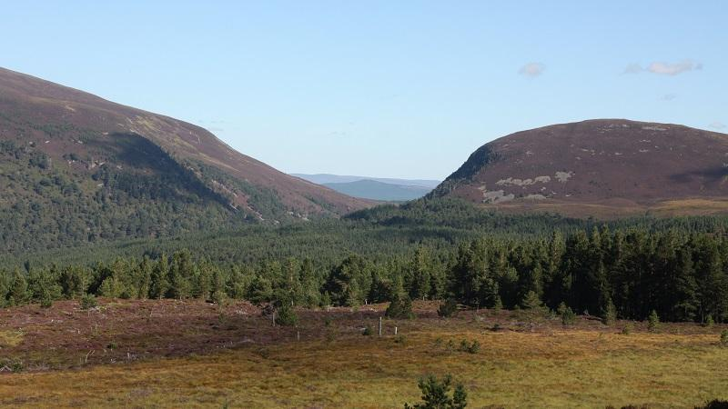A landscape containing hills and greenery in Cairngorms National Park in Scotland