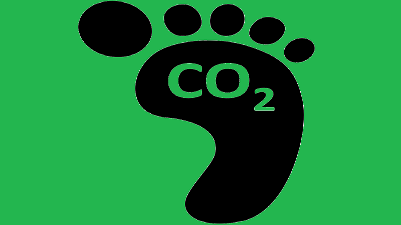 An illustration of green background with a black footprint bearing the line C02